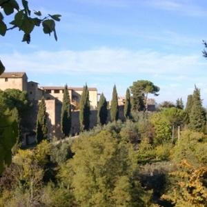 Articolo dell'autore - Tra San Galgano e San Gimignano